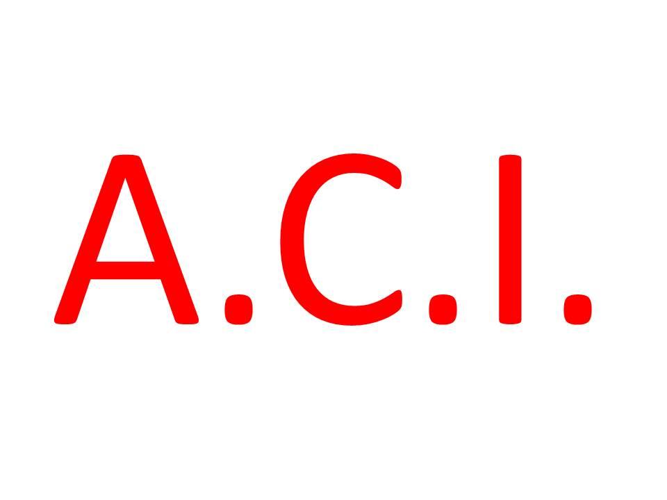 Tipos de adaptaciones curriculares individualizadas (A.C.I.)